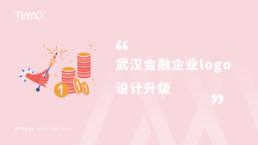 武汉金融企业logo设计升级